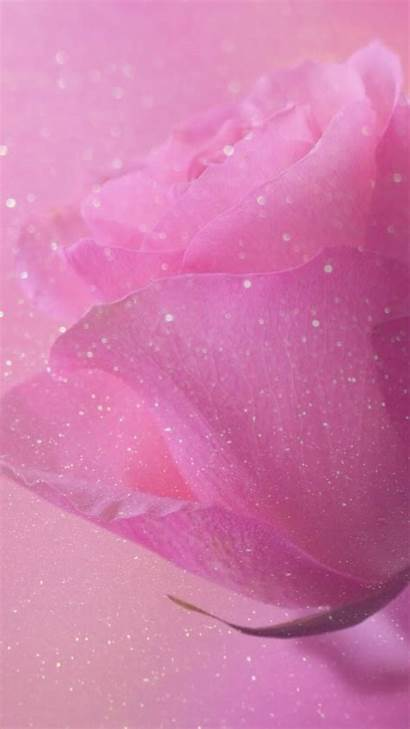 Glitter Pink Purple Wallpapers Background Sparkle Girly