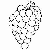 Grapes Coloring Pages Printable Template Grape Colouring Bunch Lovely Templates Fruits Cartoon Fruit Leaf Vine Learn Wine Ones Coloringonly Clipart sketch template