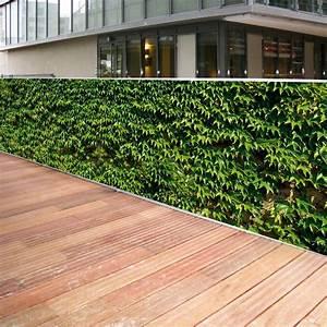 Bambou Brise Vue : brise vue castorama bambou 20170925130036 ~ Premium-room.com Idées de Décoration