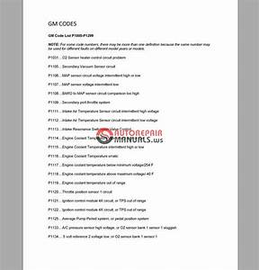 Chevrolet Captiva Sport 2008-2010 Owners  U0026 Service Manual