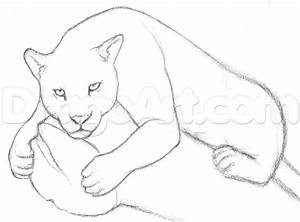 Draw a Jaguar, Step by Step, Drawing Sheets, Added by ...