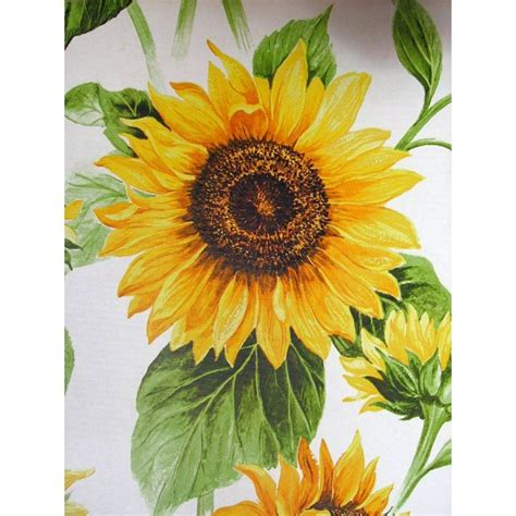 vintage sunflower pics yahoo search results yahoo search
