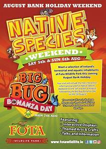 August Bank Holidays events - Native Species Weekend and ...
