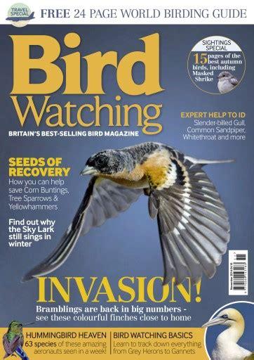 bird watching magazine november 2014 subscriptions