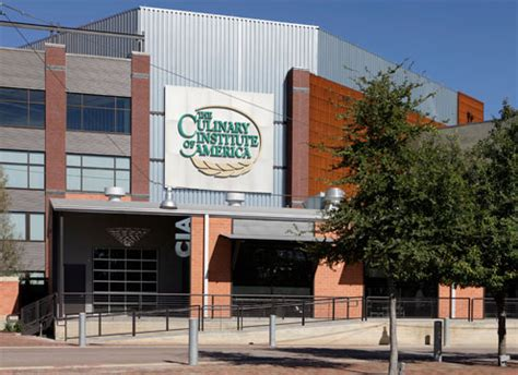 culinary institute  america texas academics