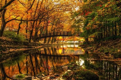 wallpaperwiki autumn river widescreen background pic