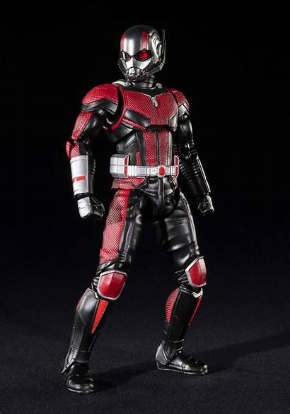 Ant Action Bandai Figure Sh Figurarts Marvel