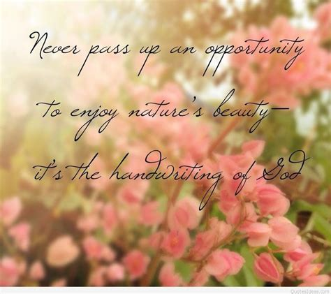 Life is full of beauty. life is beautiful quotes | Unusual Buhdda Quotes Small Buddha Qutes Solid Quote From Buddha ...