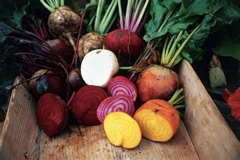 cuisiner les crosnes rutabagas crosnes panais le retour des légumes oubliés
