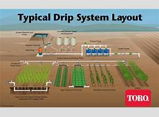 Drip Irrigation Supplies & Components DripTips by Toro