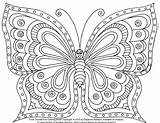 Coloring Butterfly Intricate Henna Dragon Adult Zentangle Butterflies Printable Bordado Cuentas Template Valentine Fairy Doodle Butterflys sketch template
