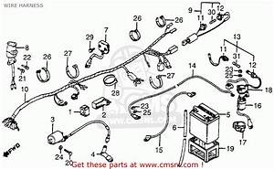 Honda Atc200e 1983  D  Big Red Usa Wire Harness