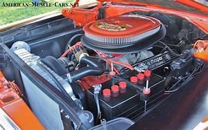 Roadrunner Motor