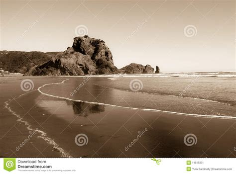 Lion Rock On The Piha Beach New Zealand Stock Image