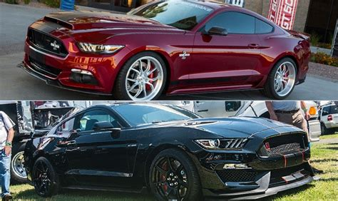 Gt500 Vs Gt350 by 2015 Snake Mustang Vs 2015 Shelby Gt350r