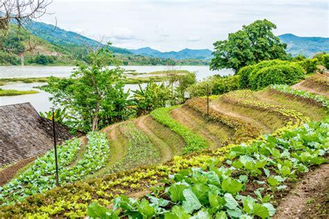 | เกษตรกรรมยั่งยืน : กระทรวงเกษตรและสหกรณ์