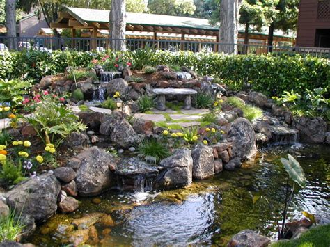 sustainable landscaping sustainable landscaping ideas in vancouver