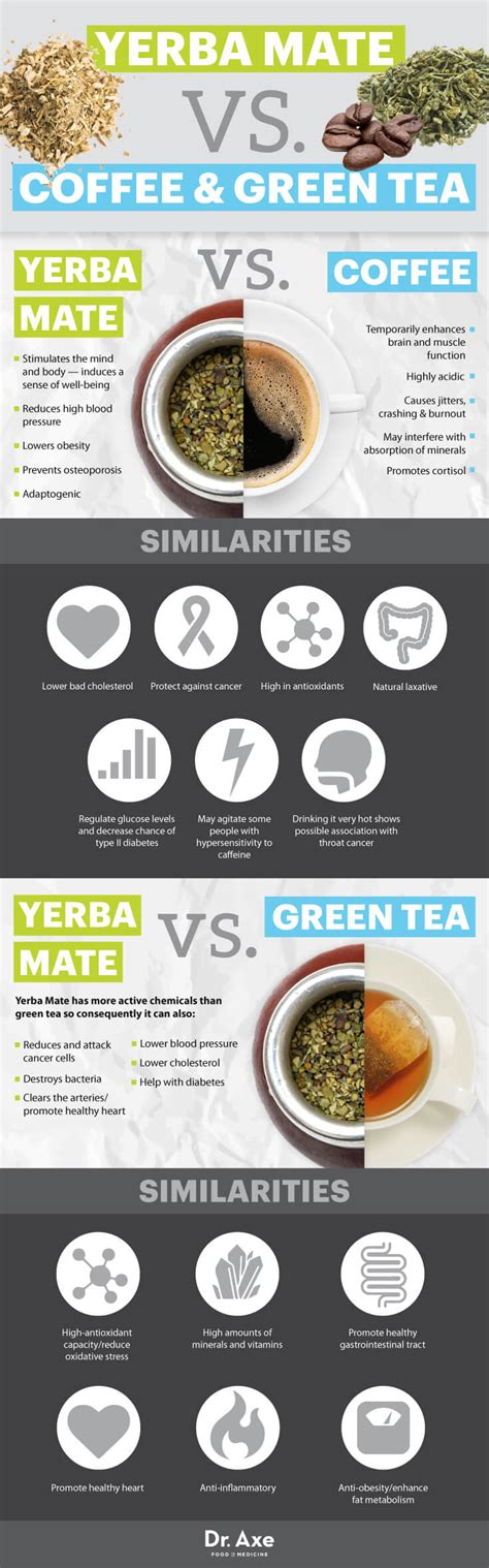 Let us find out which one is right for you according to your body needs. Yerba Mate Benefits, Including Fighting Cancer + How to ...