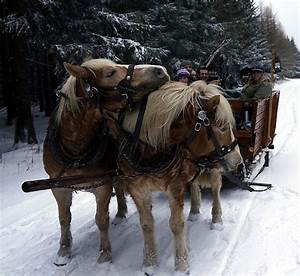 Weihnachten Im Erzgebirge : weihnachtsurlaub im erzgebirge ~ Watch28wear.com Haus und Dekorationen