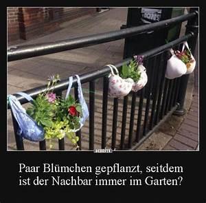 Immer Blühender Garten : paar bl mchen gepflanzt seitdem ist der nachbar immer im garten lustige bilder pinterest ~ Markanthonyermac.com Haus und Dekorationen