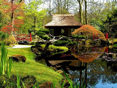 beautiful japanese garden garden water gardens pinterest