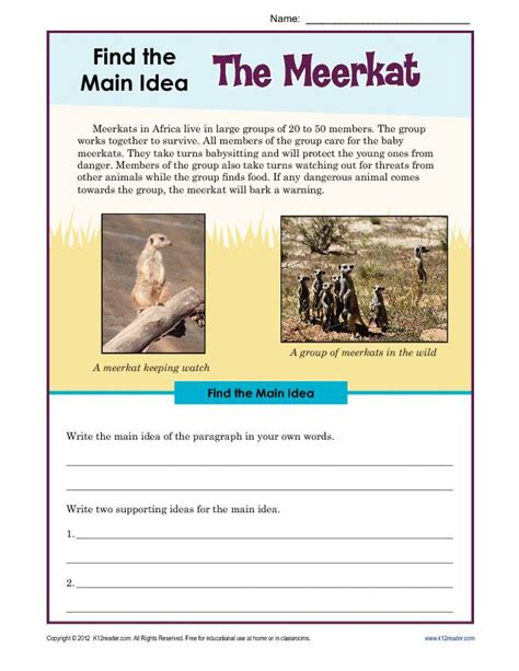 3rd or 4th grade main idea worksheet about the meerkat mcgraw hill wonders third grade reading