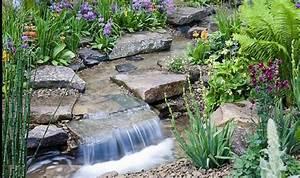 Alan Titchmarsh on growing rock plants Garden Life