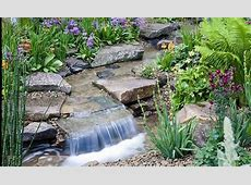 Alan Titchmarsh on growing rock plants Garden Life