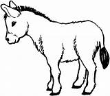Donkey Coloring Printable Donkeys Colouring Burro sketch template
