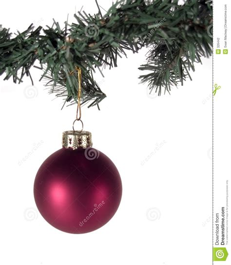 red christmas ornament  tree branch stock photography