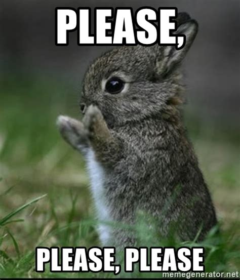 Please Memes - please please please cute bunny meme generator