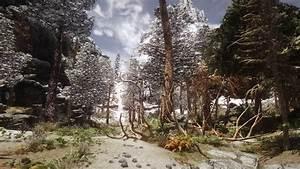 Wrothgrarian, Forest, At, Skyrim, Nexus