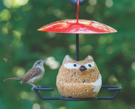 wild birds unlimited bird feeding with a little character