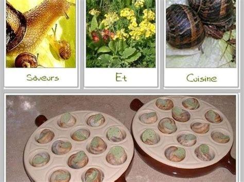 saveurs et cuisine les meilleures recettes d 39 escargots et partenariat