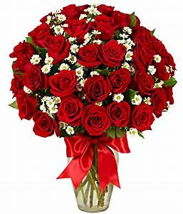 3 Dozen Roses - Red at From You Flowers