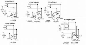 Zoeller Pump Wiring Diagrams  U2013 Icapeb Club