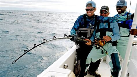 grouper goliath vs shark