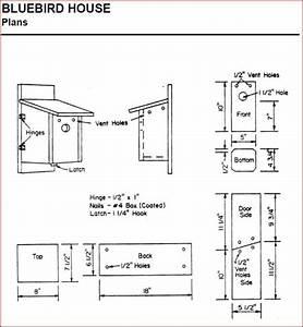 bluebird house plans ohio » woodworktips