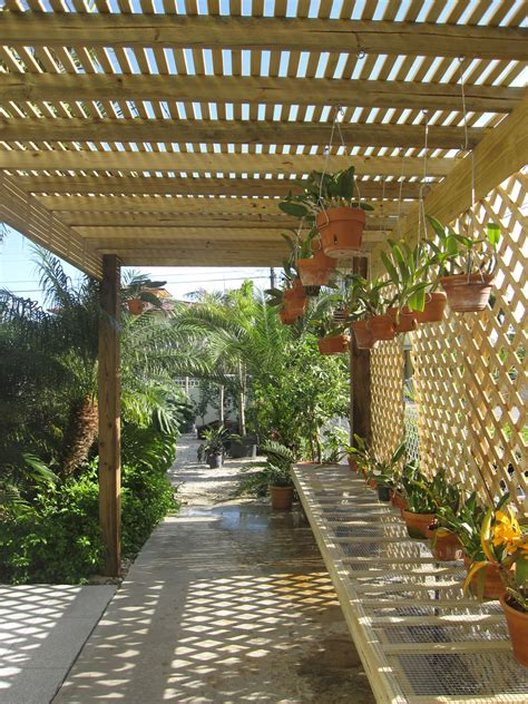 shade for orchids my lath house gardening misc