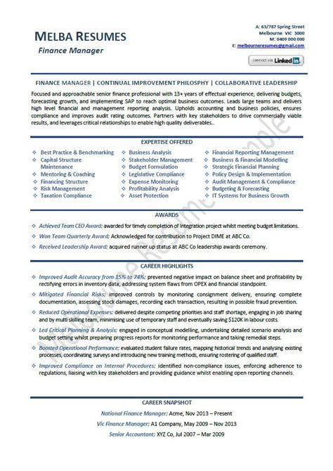 finance manager resume  template director sample