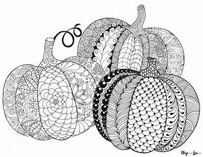 Coloring Pumpkin Pumpkins Skip Doodle Zen Skiptomylou