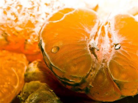 hd tangerine fruit wallpapers
