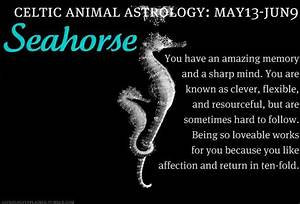 13 Zodiac Sign Birth Chart Celtic Animal Astrology Seahorse May 13 June 9