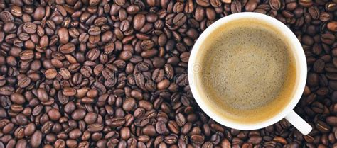 A wide variety of machine for fry coffee options are available to you, such as local service location, key selling points, and application. Fried Coffee Beans Color Background Stock Photo - Image of macro, bean: 9956476