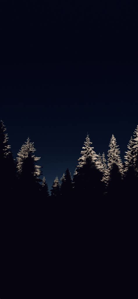 nl wood winter night mountain dark wallpaper