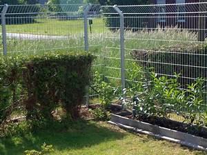 Garten Günstig Einzäunen : garten katzensicher machen mit strom geschichte von zu ~ Michelbontemps.com Haus und Dekorationen