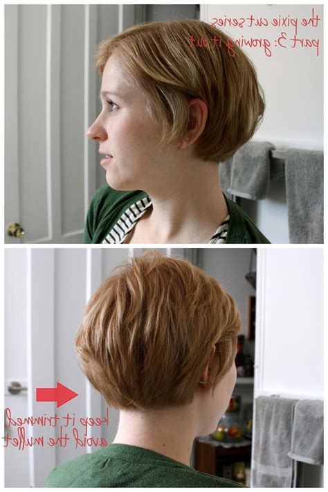 Back View Of Rounded Pixie Bob Haircut Pictures Short