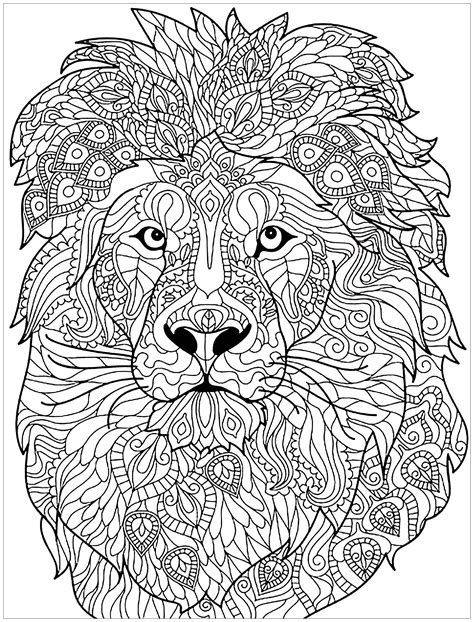 Lion Complex Patterns Lions Adult Coloring Pages
