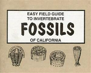 Easy Field Guide To Invertebrate Fossils Of California