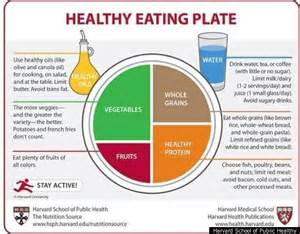 Label Printing Template 21 Per Sheet Harvard Healthy Plate Tries To One Up Usda 39 S Myplate Meets Opposition Huffpost